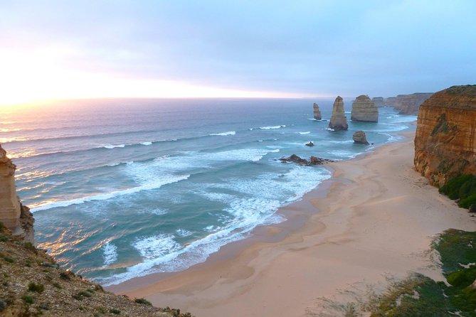 Gran viaje por el océano de 3 días y excursión por la fauna australiana desde Melbourne