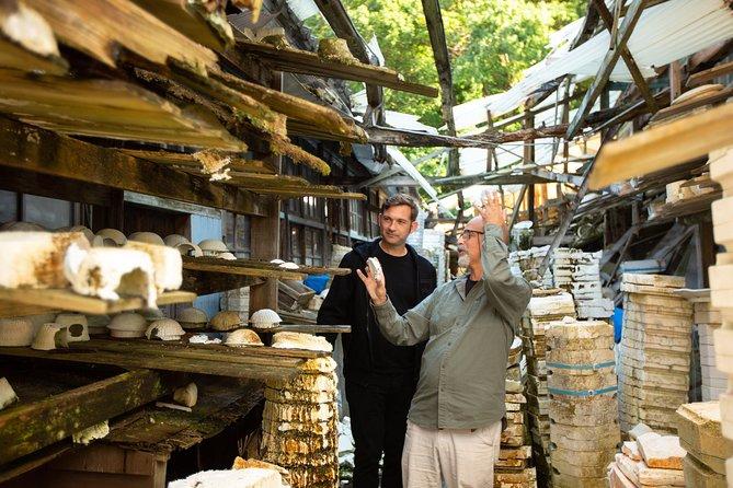 Arita Ware Private Walking Tour and Ceramics Treasure Hunt