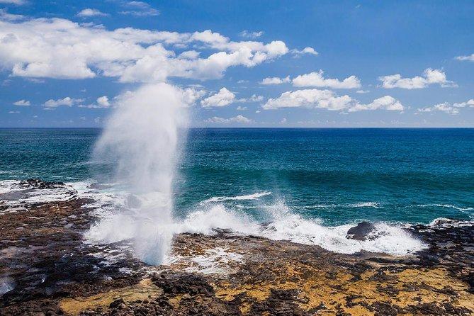 Kauai Island Custom Private Tour. 6 & 8 hours