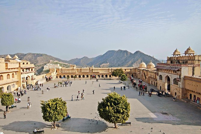 Half day city tour of Jaipur (Amer Fort & Jaigarh Fort)