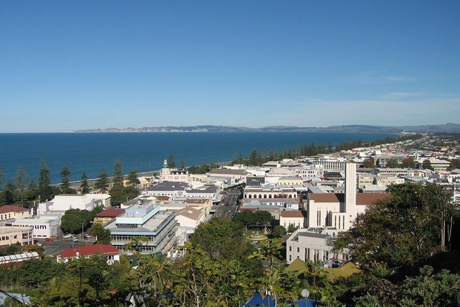 Napier Shore Excursion: City Sights and Hawke's Bay Tour