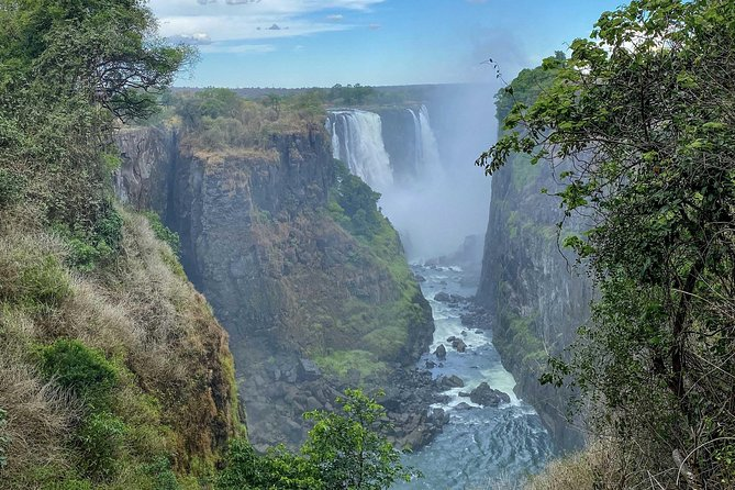 Guided tour of the Victoria Falls Rainforest