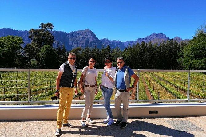 Vineyard Safari