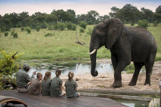 6 Days Kenya Family Safari
