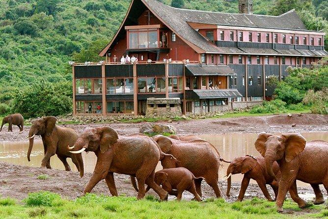 Private 8 Days Best Of kenya Big 5 Safari