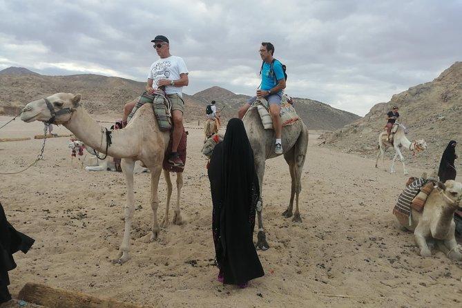 Quad bike ride from Hurghada