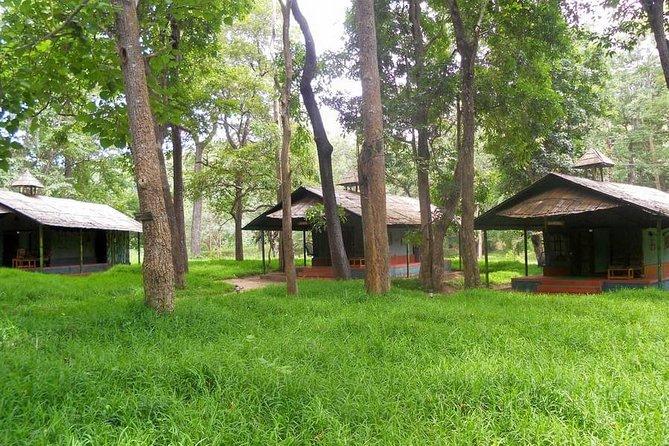 2 Days 1 Night Tour Of Parambikulam Nature Park