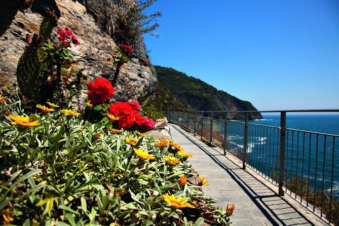 All Five Cinque Terre Villages & 2hrs Hiking Adventure: Day Trip from Florence photo 10