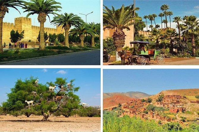 Go discover Taroudant & Tiout Day Trip from agadir