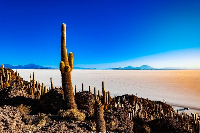 Salar De Uyuni (1Day) - Spanish Speaking Guide