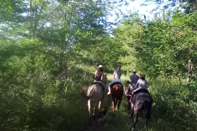 Horseback riding guided by the Pampas plain