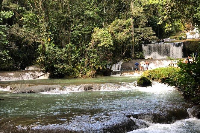 South Coast Jamaica YS Falls Tour