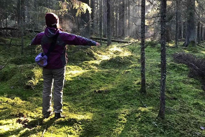 Hiking Experience in a National Park with Backpacker Helsinki Tour