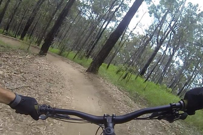eMtn Bike Experience, National Park Trails, Afternoon Ride