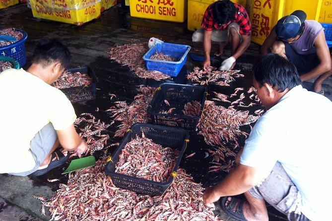 Crab Island Rural Adventure
