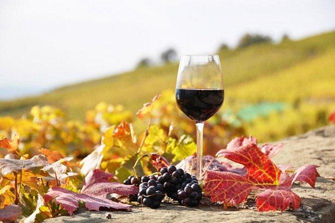 Private tour: Full day Wine Tasting Naousa & Ag.Nikolaos