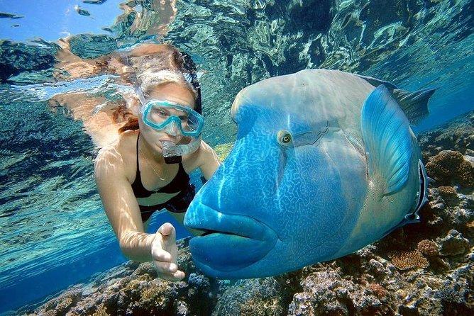 Orange Island VIP & Water Sports Full Day Snorkeling Sea Trip - Hurghada