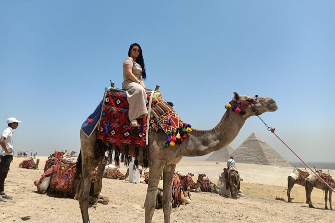 Half day Guided tour to Giza pyramids Sphinx with 1 Hour Camel ride