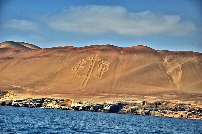 Paracas and Ica full day from Lima - daily departures photo 8