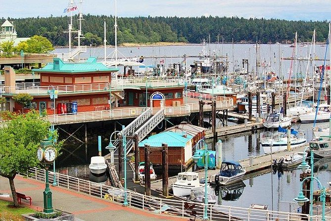 Vancouver to Nanaimo, Ucluelet, Tofino 2 Days Harbour City Tour Private
