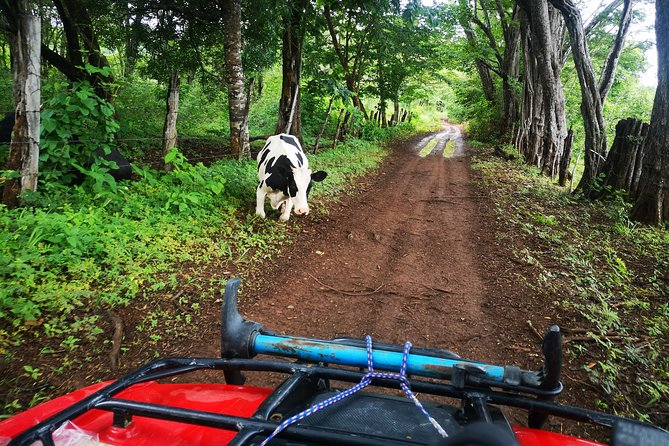 ATV adventure from Riu, Secrets and papagayo photo 3