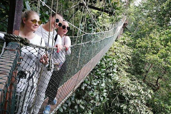 2D 1N Tour Jungle Walk to Lata Berkoh + Rainforest Taman Negara