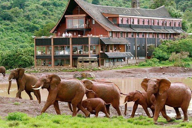 Private 5 Days Aberdares Ol Pejeta Conservancy & Samburu Wildlife Safari