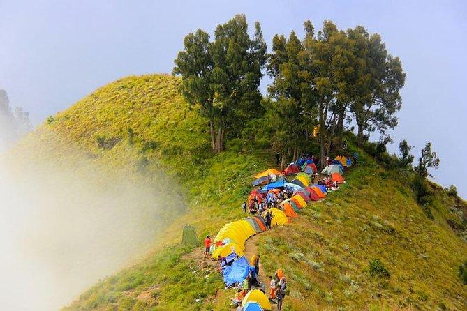 Trekking Mount Rinjani Summit 2 Days 1 Night - Rinjani Trekking Expert