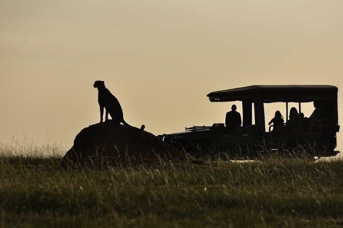 3 Days Masai Mara Trip