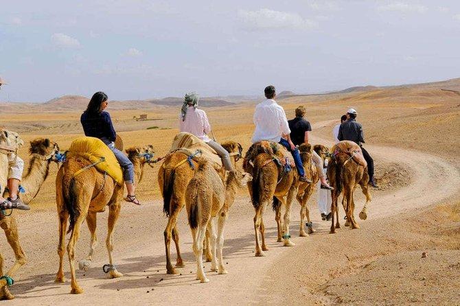 Camel Ride in agafay