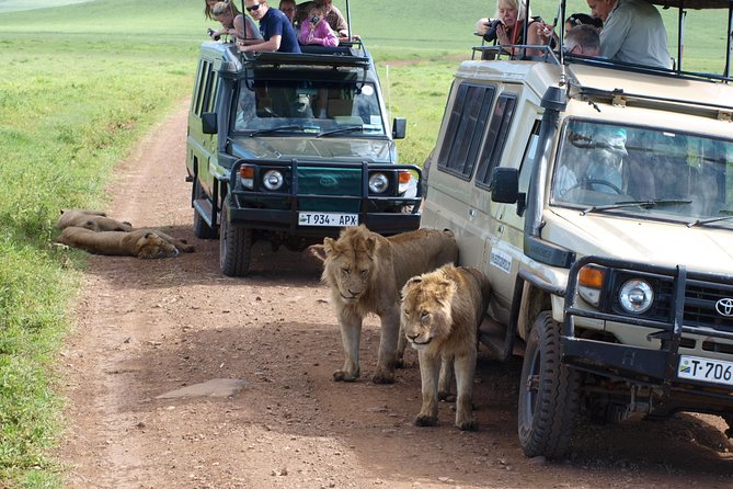 Serengeti and Ngorongoro Crater 3 days photo 12