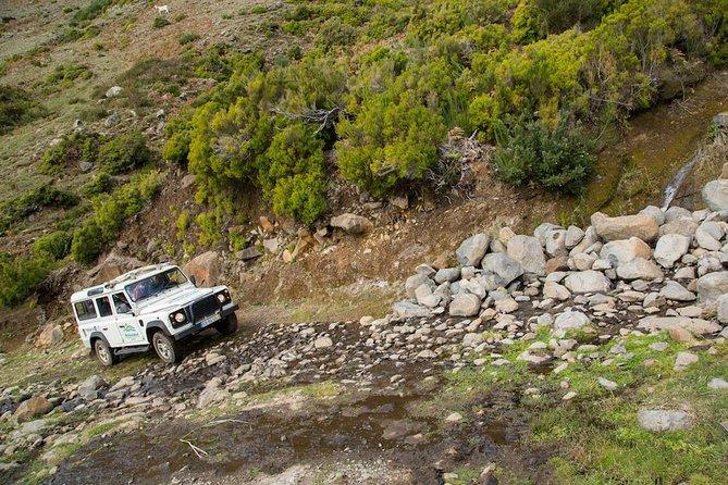 Private Tour: Catamaran & Jeep Safari - Full Day Tuesday Tour
