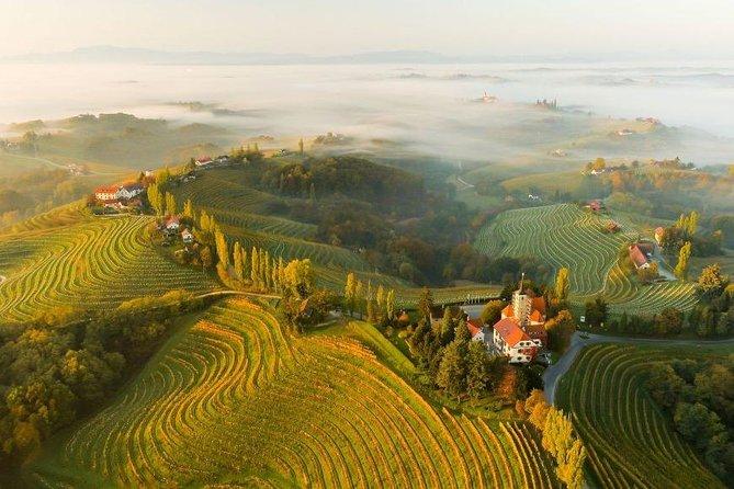 Wine Tour East Slovenia