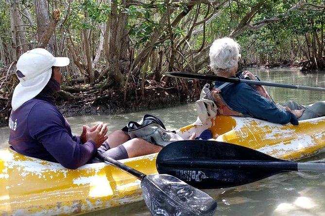 Ecotouristic Kayak Tour