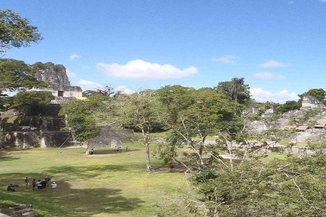 Belize Shuttle from Belize City or San Ignacio to and from Tikal or Flores