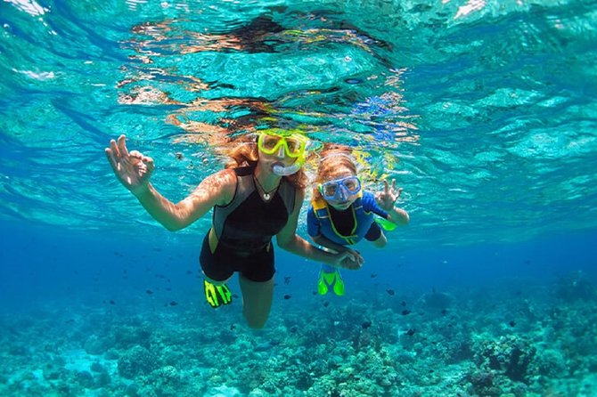 Snorkeling and Mimosa Tour from Punta Cana