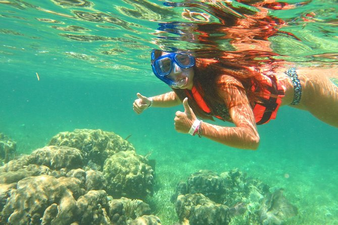 Basic Snorkel Experience in Cancun photo 3