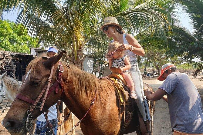 Beach Horseback Riding - Crocs - Cliff Divers - Shopping - Mex Lunch & Drinks