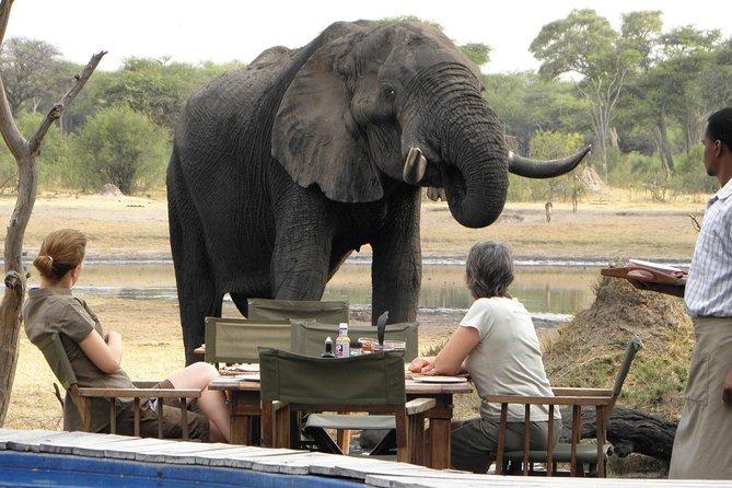 3 Nights Hwange Safari