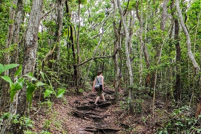 Small-Group Hiking Experience in Antigua