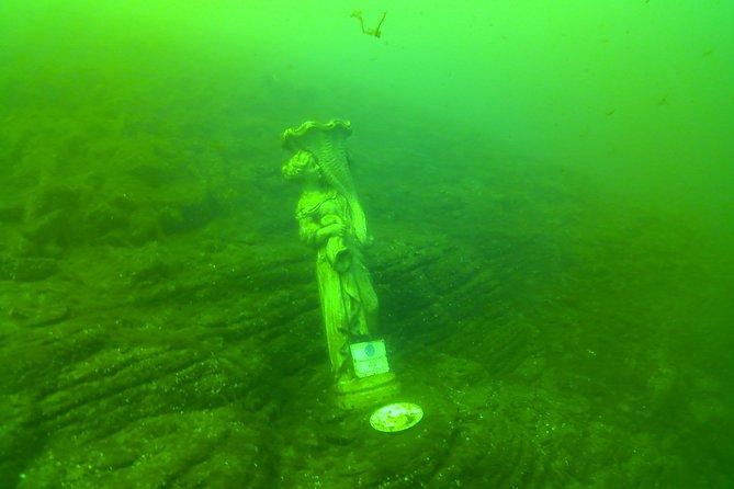 Diving in the Lake Como -> Lariosaurus <