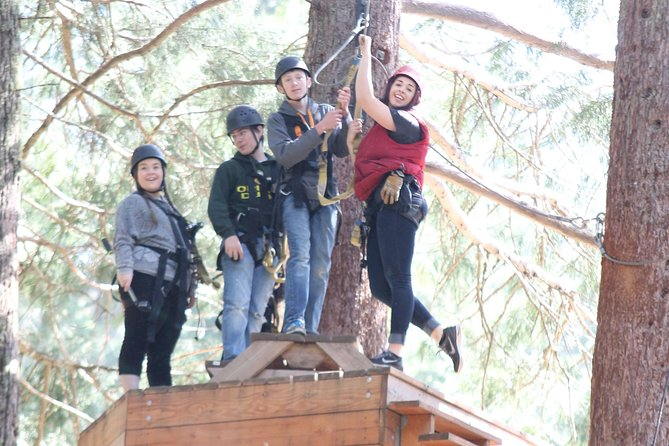 10 Zip Line Tour photo 3