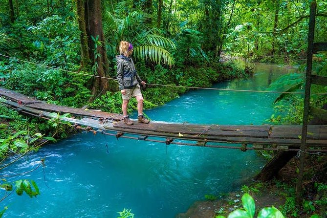 Rio Celeste river waterfall, hike and hot springs tour from San Jose, Costa Rica photo 2