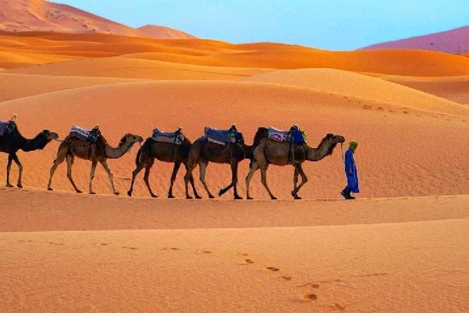 Fes to Marrakech sahara tour 3 days photo 1