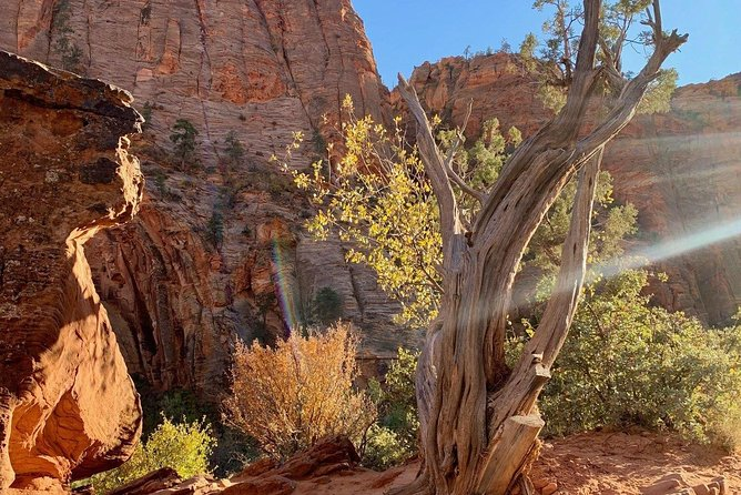Private Day Tour: Zion National Park photo 1