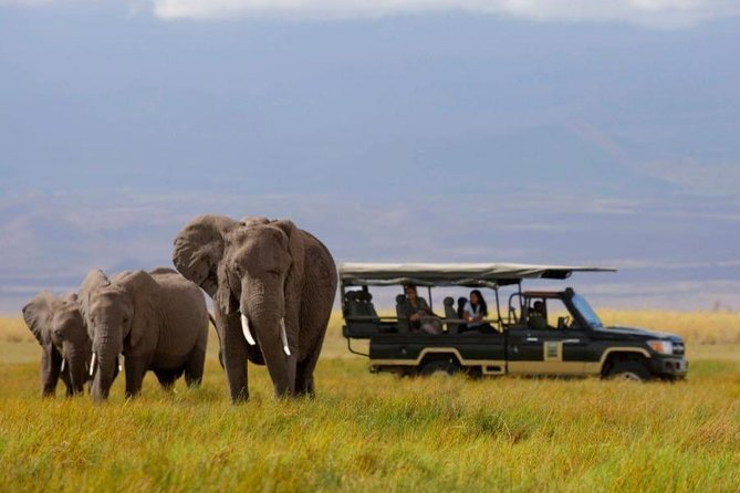 The Nairobi National Park Half day Tour.