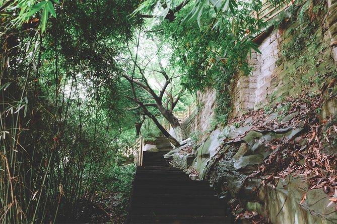 3-Hour Walking Tour to Chongqing Mountain City Lane and The Felting Museum