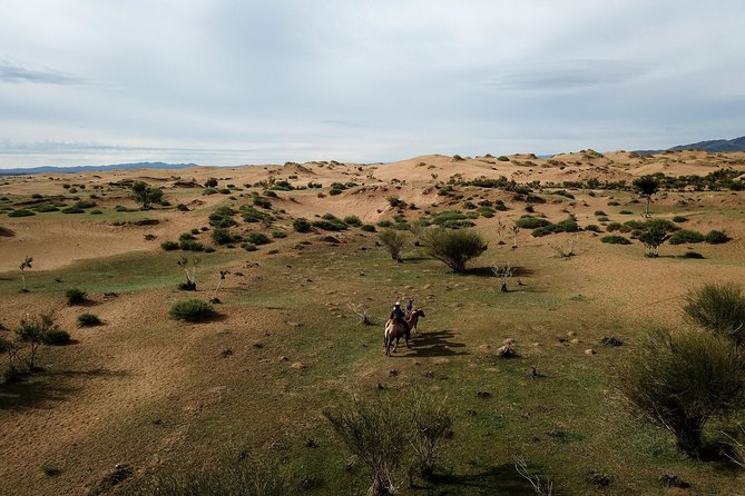 Overnight Semi-Gobi, Khustai National Park photo 1
