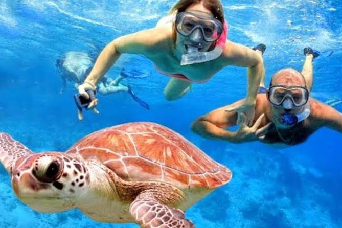 Image result for Blue Lagoon Snorkeling, Monkey Bar and Bias Tugel Beach Experience