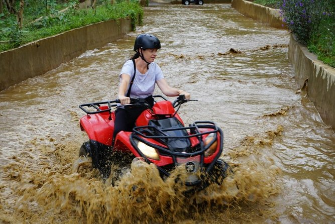 Quad Ride and Ubud Tour